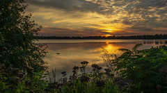 Sunset (Faron Dillon) Tags: a big fave sunset water lake wilcox richmond hill ontario evening saturated