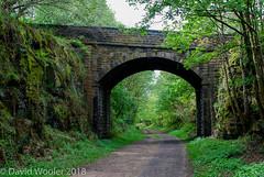 Bridge over Trans Pennine Trail near Penistone (Eeee Bi Gum) Tags: bridge disusedrailway transpenninetrail yorkshire southyorkshire