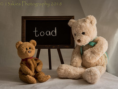 My Uncle (HTBT) (13skies (broke my wrist)) Tags: teddybeartuesday chalk words toad cartowed problem barrie learning happyteddybeartuesday htbt chalkboard class understanding meanings teddybears funny listen