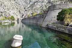Kotor in der Kotor-Bucht/Kroatien (10/2018) (Migathgi) Tags: kroatien 2018 migathgi kotor bucht hrvatska croatia dalmatien f010 v100