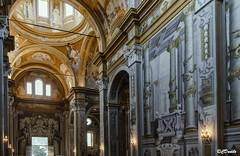 La Chiesa di San Girolamo La Certosa di Parma (danilocolombo69) Tags: chiesa navata cupola certosa stendhal danilocolombo danilocolombo69 nikonclubit