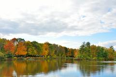 Miroir d'automne (Lucien-Guy) Tags: automne autumn couleurs colors rivière river miroir reflections reflexion arbres trees nuages clouds