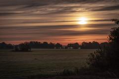 This moning (martintimmann) Tags: frost sonne sonnenaufgang sunrise sun mist nebel fog freeezing landscape landschaft sony a9 zeiss batis batis1885 e