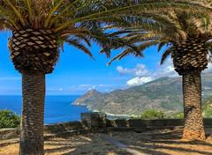 Belle vue à l'ombre (Pop626262 (Fort occupé)) Tags: freedom corse mer montagne bleu vert arbre ombre palmier iphone paysage