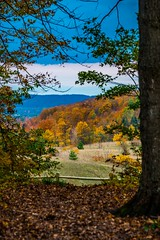 Beautiful Fall Overlook (Epperly Photographic Images) Tags: fall autumn scenic nature trees colorful michigan nikon d800e