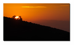 Paysage F14 Def Rt Bd Rd1 IMG_8081 (thierrybarre) Tags: sunrise soleil matin montagne colline ardèche rochers arbres forêt bois ambiance mood paysage landscape aube