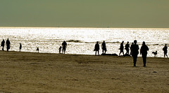 ... people at the beach ... (wolli s) Tags: provinznordholland niederlande nl beach backlight silhouette strand