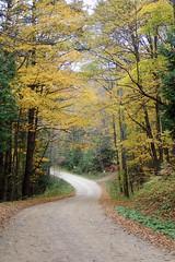 Hoggs Falls (Simon -n- Kathy) Tags: thornbury ontario greycounty fall autumn trees walk path hike apples