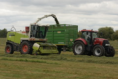 Claas Jaguar 890 SPFH filling a Smyth Trailers Field Master Trailer drawn by a Case IH Puma 160 Tractor (Shane Casey CK25) Tags: claas jaguar 890 spfh filling smyth trailers field master trailer drawn case ih puma 160 tractor cnh red self propelled forage harvester rathcormac traktor traktori tracteur trekker trator ciągnik silage silage18 silage2018 grass grass18 grass2018 winter feed fodder county cork ireland irish farm farmer farming agri agriculture contractor ground soil earth cows cattle work working horse power horsepower hp pull pulling cut cutting crop lifting machine machinery nikon d7200