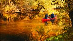 Autumn colors magic on the river Ilmenau near Bad Bevensen (Ostseetroll) Tags: badbevensen deu deutschland geo:lat=5308486558 geo:lon=1058292886 geotagged ilmenau niedersachsen herbst farben zauber autumn magic olympus em10markii