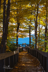 Scenic Overlook (amndcook) Tags: autumn hike landscape season tunnel water spiritledphotography outdoor amandacook fall orange red trees blue upperpeninsula pentax outside boardwalk sunrise lakesuperior colors nature up yellow outdoors walk