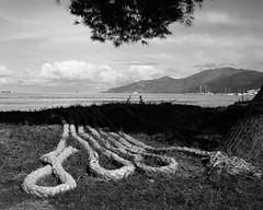 Old Mooring Ropes (Wilco1954) Tags: corse ropes seascape mooring baiedesaintflorent beach corsica