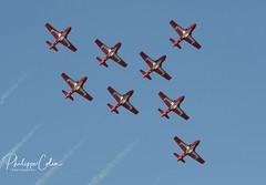 DSC_6671w (Mephisto3) Tags: rcaf snowbirds 431sqdn aerogatineau2018 gatineau acrobatic cynd airshow demo avgeek