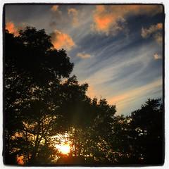 Sunset (www.nielsdejgaard.dk) Tags: sunset solnedgang himmel sky skyer clouds træer trees vejbystrand