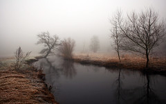 trees-samsung-nature-stream-fog-rivers-landscapes-mistamazing-morning-dawn-mobile-backgroundnature (tanyapavlicapschyrembel) Tags:
