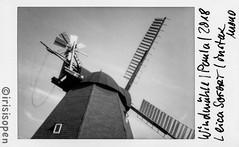 Halbe Paula # 078 # Leica SOFORT Fuji instax mini MONOCHROME - 2018 (íṛíṡíṡôṗĕñ ◎◉◎) Tags: leica sofort film instant analog schwarzweiss bw instax monochrome irisisopen
