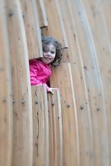 _DSC4849 Pod Lookout (Charles Bonham) Tags: whitingforestcanopywalk midlandmi fall canopywalk pod treefort window child toddler sonya7rll charlesbonhamphotography outdoors