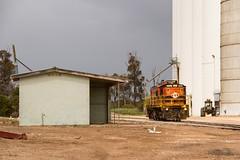 Surviving station (Aussie foamer) Tags: 851 830class alco sar southaustralianrailways australiannational asr australiansouthernrailroad arg australianrailroadgroup silo gwa geneseewyomingaustralia waramboo southaustralia train railway locomotive rpausa830 rpausa830851