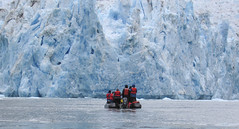 Awestruck by Ice (ExpeditionTrips) Tags: brandye lindblad cruise alaska national geographic sea bird southeast inside passage tracy arm fjord expeditiontrips adventure travel glacier