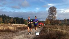 haarlerbergloop 10 km (37)