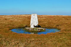 Fan Gyhirych trig point (cmw_1965) Tags: trig triangulation point powys brecon beacons national park fforest fawr forest geopark geoparc wales mid central welsh landscape mountain mountainscape fans peaks gyhirych trigonometrical pillar station hotine