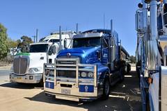 Adkins (quarterdeck888) Tags: trucks truckies transport australianroadtransport roadtransport lorry primemover bigrig overtheroad class8 heavyvehicle highway road truckphotos nikon d7100 movingtrucks jerilderietrucks jerilderietruckphotos quarterdeck frosty expressfreight generalfreight logistics overnightfreight highwayphotos semitrailer semis semi flickr flickrphotos urana uranansw uranatruckshow uranashow urana2018 oldtrucks truckshow truckdisplay truckexpo tractortrailer semitruckshow drt flattops roadtrain t604 kenworth adkins