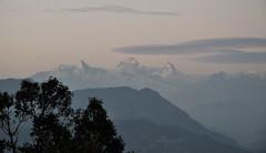Post sunset Nandadevi. (draskd) Tags: nandadevi mtnandadevi chaukori postsunset panwalidwar nandakhat cold white