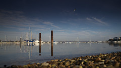 Marina (Andrew Malbon) Tags: leica m leicamp portsmouth southsea marina sea shore shingle boats rope colour autumn dawn defence masts zeiss 21mm bird architecture lowtide depthoffield ripples tide