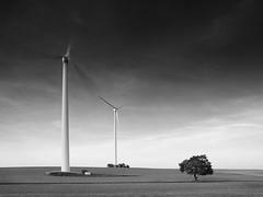 Wind Turbines (Thunderbird61) Tags: windturbines landscape technic renewableenergy tree energy mecorexfilters bw sw nb zw mono monochrome blackwhite schwarzweis zwartwit noirblanc neroblanco nigeralbus landgebied pentax mediumformat sundaylights nrw iserlohn germany