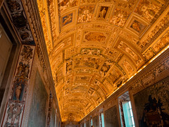 IMG_7578 (catarina-tavares) Tags: vatican museum treasure paitings canonpowershot italy rome old paint celling