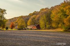 Lebro Ranch (david.horst.7) Tags: fall colors ridge woods timber autumn trees farm field barn rural