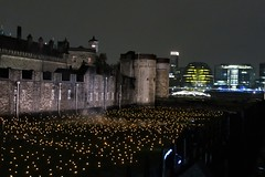Beyond The Deepening Shadow, Tower of London (Alex J Donohue) Tags: tower london wwi armistice day november 11th 100th anniversay world war 1 beyond the deepening shadow