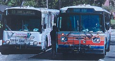 252 and 234 (Guayabal) Tags: university florida orion i bus gillig phantom gainesville regional transit system