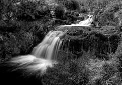 Blackden Brook (l4ts) Tags: landscape derbyshire peakdistrict darkpeak kinderscout blackdenbrook moorland waterfall longexposure blackwhite monochrome circularpolarisingfilter