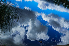 reflections in Lake (Jeffrey Balfus (thx for 3 Million views)) Tags: clouds lake landscape sonya9mirrorless sonyalpha sonyilce9 fullframe sonyfe282470gm sel2470f28gm saratoga california unitedstates us sky water