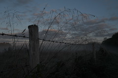 Over the fence (Daymon55) Tags: morning sky clouds colour fence outdoors frosty fujifilm fujifilmxt3 blue