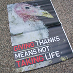 Midwest March for Animals Chicago Illinois 10-14-18 4589 thumbnail