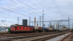SBB 11640, Pratteln (MacCookie) Tags: 11640 475403 4754032 620040 6200406 918544754032chblsc 918546200406chsbbc bls bls403 blscargo br193x4vectron bahnhofpratteln bern–lötschberg–simplonrailway cff cantonofbasellandschaft cheminsdeferfédérauxsuisses confoederatiohelvetica europe ffs ferroviefederalisvizzere kantonbasellandschaft münchenstein pratteln prattelnstation re475 re66 re620 sbb sbbcffffs sbbcffffscargo sbbcargo sbbc schweiz schweizerischebundesbahnen siemens suisse svizzera swissconfederation swissfederalrailways swissrailways switzerland vectron vectronms bahn cargotrain dieselfueltrain eisenbahn electriclocomotive engine freighttrain güterzug lightengine locomotive railways zug basellandschaft