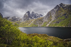 the dark image (Wim van de Meerendonk, loving nature) Tags: lofoten norway nature mountain mountainscape monumental cloud clouds cloudscape fjord green hill hills icefield ice landscape mountains outdoors outdoor rock rocks sony sky snow scenic tree trees wimvandem golddragon