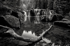 Lower Lewis Falls (Joshua Johnston Photography) Tags: sonya7iii washington pacificnorthwest pnw joshuajohnston landscapephotography bnw blackandwhite canonef1635mmf28liii lowerlewisfalls