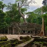 Temple ruins of Ta Prohm (a.k.a. jungle temple) in Angkor Archeological Park near Siem Reap, Cambodia thumbnail