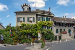Vine Covered Houses (Bephep2010) Tags: 2018 7markiii alpha architektur geneva genève genf haus hermance ranken schweiz sommer sony switzerland architecture house summer vines ⍺7iii ch