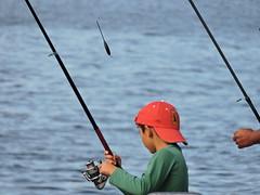 9: 22 September 2018 (keepps) Tags: switzerland suisse schweiz vaud montreux fall autumn fishing 365photos