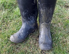 Selection of previously unreleased images (essex_mud_explorer) Tags: wellies wellingtons welly wellington boots wellingtonboots rubber rubberboots gummistiefel gumboots rainboots rubberlaarzen bottes caoutchouc stivali cebo mud muddy mudflats estuary creek tidal muddyboots muddywellies muddywaders
