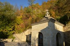 DSC_5439 (Sector2000) Tags: осень золотаяосень парк природа листья деревья automn выходной лес парки