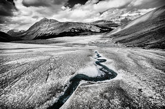 Out of the glacier (Sean X. Liu) Tags: glacia athabasca columbiaicefield ice mountains rockymountains canadianrockies alberta banffnationalpark jasper blackandwhite blackwhite monochrome leadinglines