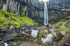 Svartifoss (UnchartedLens) Tags: svartifoss iceland waterfall water landscape river flowing trees leaves plants rocks volcano volcanic nature natural travel destination
