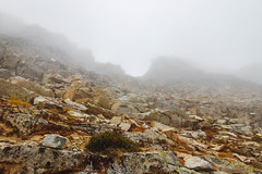 Found it (johnwporter) Tags: hiking scramble climbing mountaineering cascades northcascades mountains wilderness stephenmatherwilderness northcascadesnationalpark nationalpark corteopeak 徒步 爬行 攀登 登山 喀斯喀特山脈 北喀斯喀特山脈 山 荒野 史蒂芬馬瑟荒野 北喀斯喀特山脈國家公園 國家公園 寇特歐峯