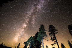 Night-Sky in in Yosemite National Park (potto1982) Tags: usaroundtrip night usa wow nikon unitedstatesofamerica ereignisse yosemitenationalpark himmel nikond810 2018 stars sky bäume vereinigtestaatenvonamerika milkyway sterne amazingplace yosemite amazingday trees nachthimmel trip sigma unitedstates d810 america amerika wawona california us