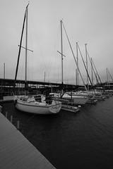 Silver Lake Marina Harbor (vi_charan) Tags: fujifilm harbor boats mood fujixt3 fujixf1024